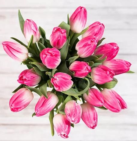 25. marec, materinski dan